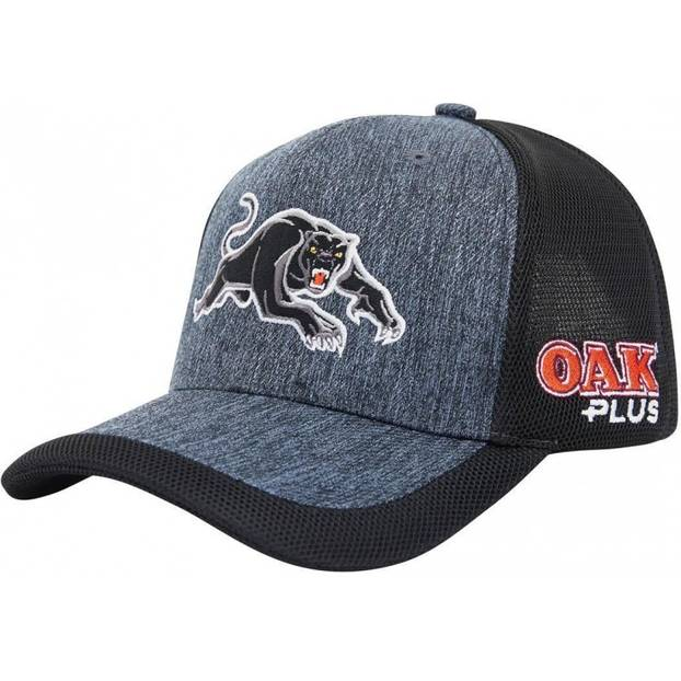 2020 Panthers Training Cap1