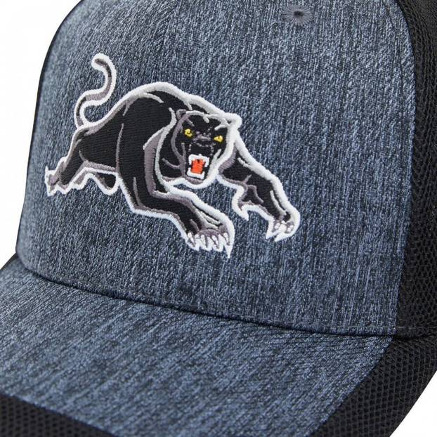 2020 Panthers Training Cap4