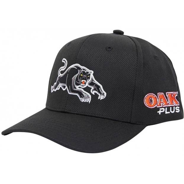 2020 Panthers Media Baseball Cap1