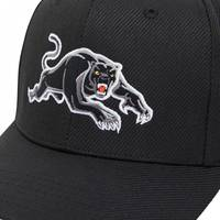 2020 Panthers Media Baseball Cap4