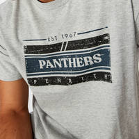 Panthers Men's Graphic Tee1