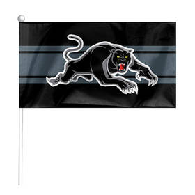 Panthers Mini Flag