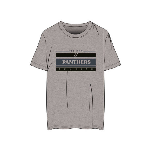Panthers Youth Graphic Tee0