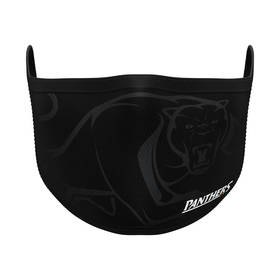 PRE-ORDER: Panthers Face Mask