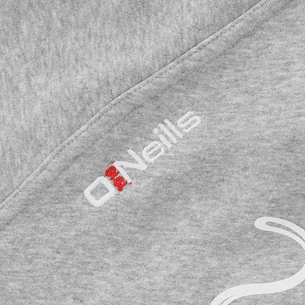 Panthers Youth Arena Hoodie2