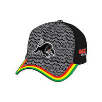 2021 Panthers Training Cap1