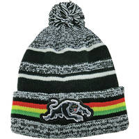 Panthers Dynamo Beanie1