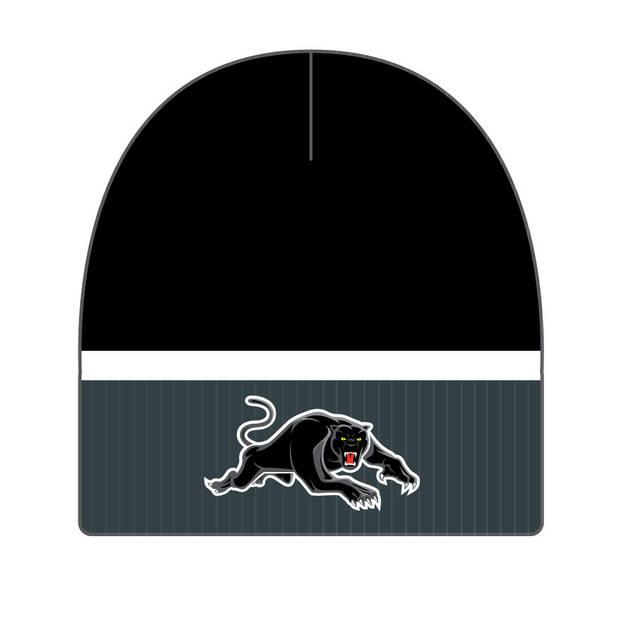 Panthers Boundary Rib Beanie0
