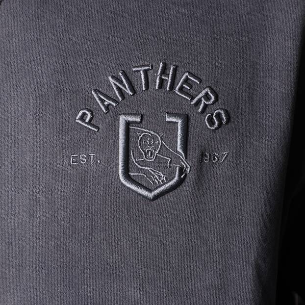 Panthers Men's Chest Embroidery Hoodie3