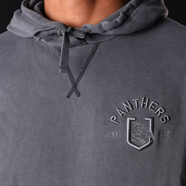 Panthers Men's Chest Embroidery Hoodie4