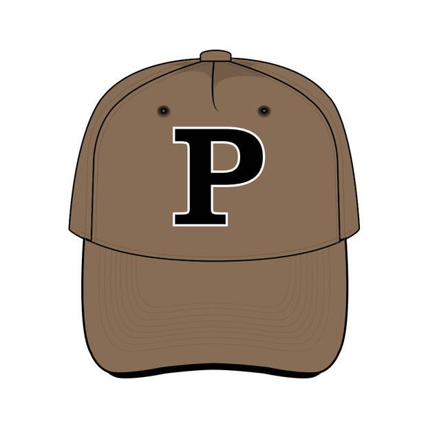 Panthers Team Cap Brown0