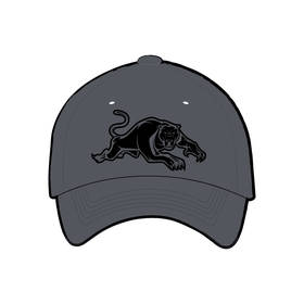 PANTHERS GREY CAP