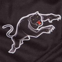 2020 Panthers Youth Training Shorts3