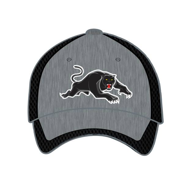 2020 Panthers Training Cap0