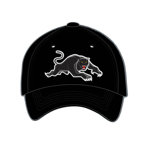 2020 Panthers Media Baseball Cap0